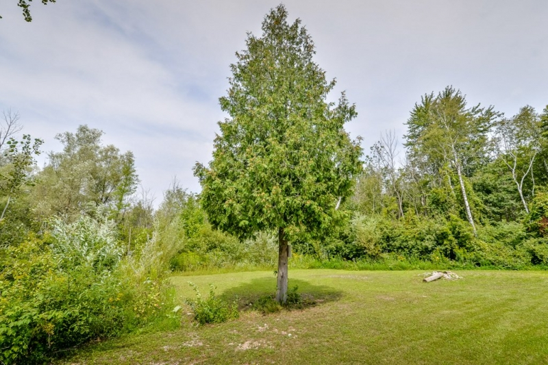 1 Basswood Rd, Mini Lakes (36)